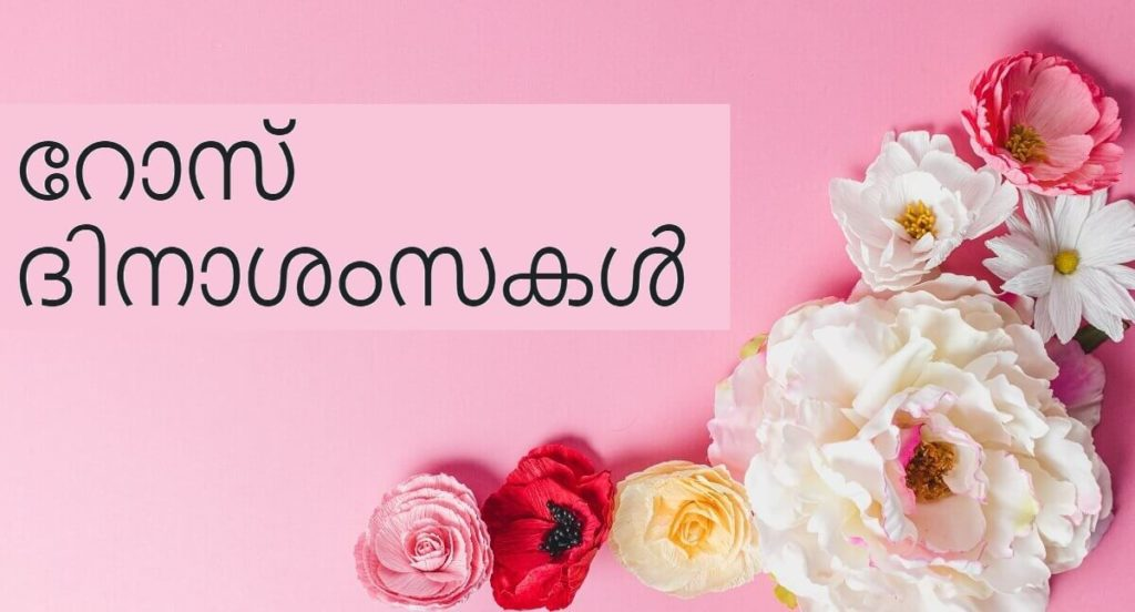 Happy Rose Day Wishes Images with Quotes in Malayalam