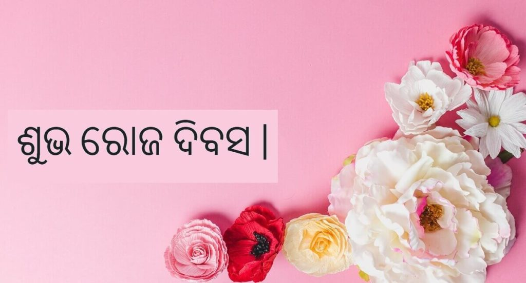 Happy Rose Day Wishes Images with Quotes in Odia