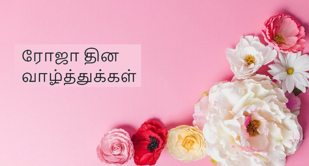 Happy Rose Day Wishes Images with Quotes in Tamil